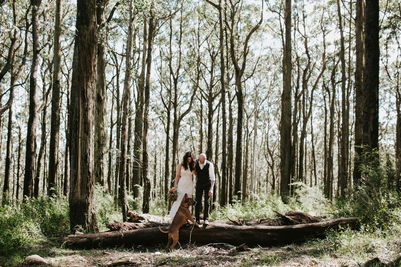monicajames_dandenongs-dog-fun-relaxed-engagement-shoot_melbourne-fun-candid-wedding-photography_3