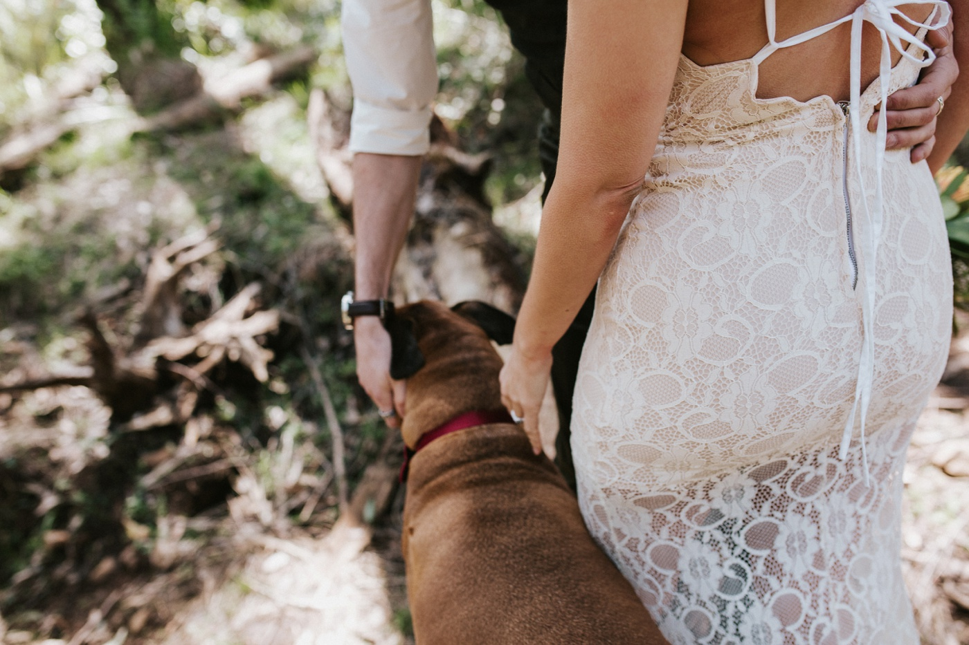 monicajames_dandenongs-dog-fun-relaxed-engagement-shoot_melbourne-fun-candid-wedding-photography_8