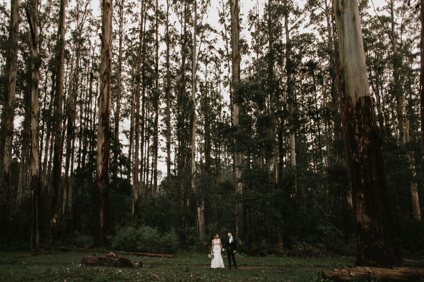 wesleybianca_dandenongs-sherbrooke-poets-lane-wedding_melbourne-quirky-fun-candid-wedding-photography_49